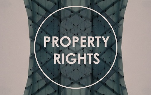 Ineng - Property Rights in South Africa