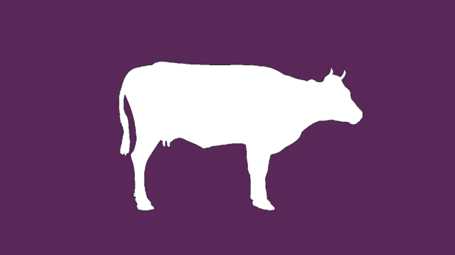 ZACP - Purple Cow capitalist party